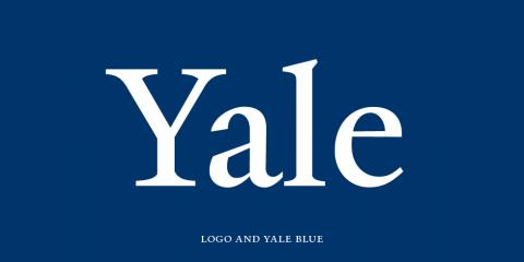 Yale university press web style guide foundations of user.